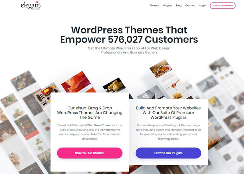 Elegant Themes - Divi Website